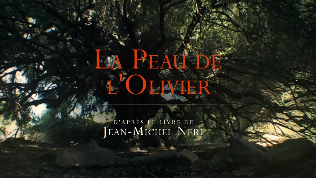 LA PEAU DE L'OLIVIER- Projection  du documentaire de LAURENT BILLARD